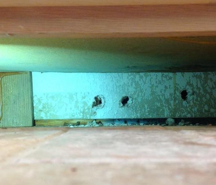Mold Growth in Ceiling Before