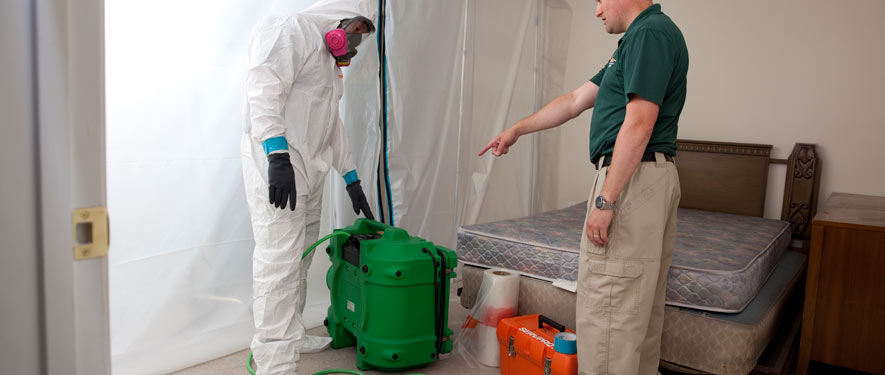 San Antonio, TX mold removal process